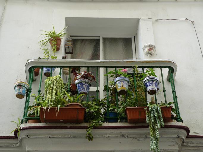 balkon s květináči